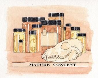 Wet Preserved Sheep Tape Worm Specimen - Mature - Jarred Specimen - 1 Specimen - Large Vial