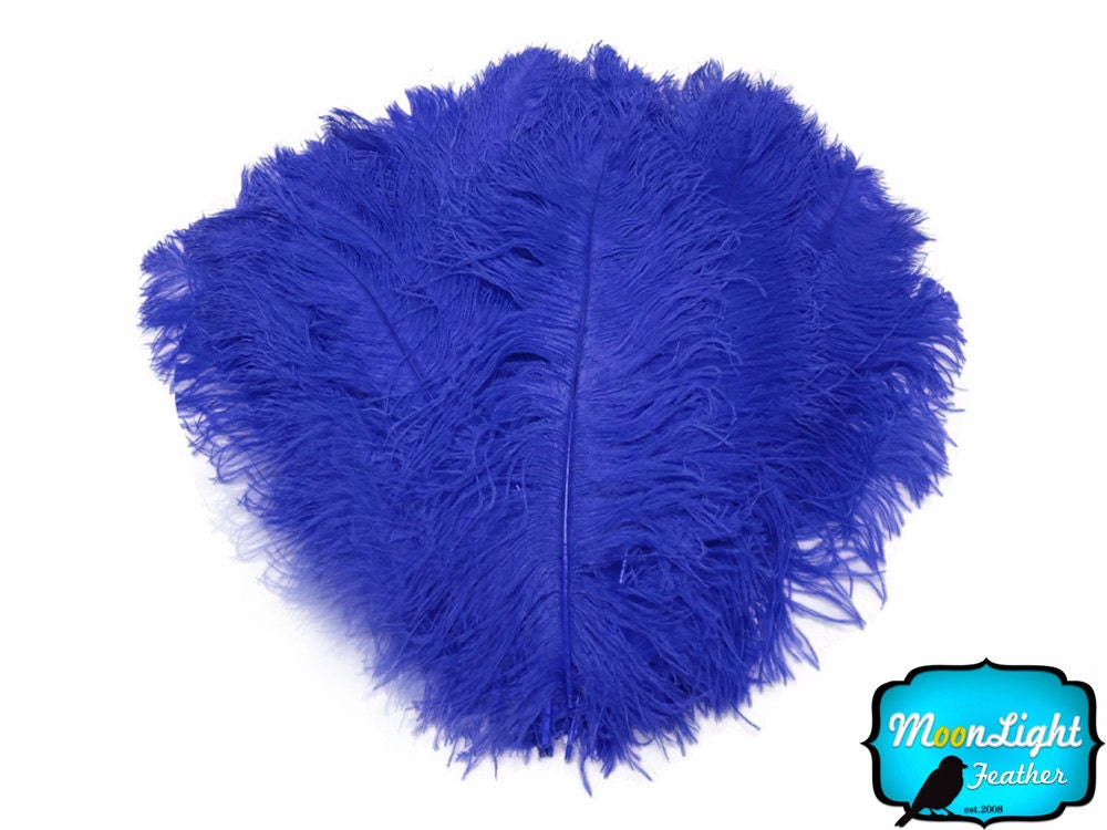 Wedding centerpiece feathers lb quot royal blue