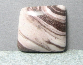 Zebra Agate - Zebra Jasper - Cabochon - Stone Cabochon - 25.2 by 24.6 mm