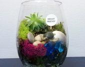 Succulent and Moss Terrarium, Choose Your Favorite Creature