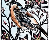 Chaffinch - Original Bird Linoprint - hand painted