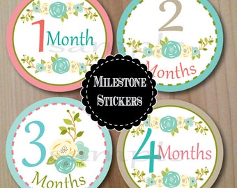 Country Flowers, Milestone Stickers, Monthly Stickers, Baby Shower Gift, Baby Stickers, Professionally Printed