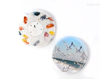 Seagull and Shells Magnets - Set of 2 Magnets - Flying Bird Magnet - Sand Dollar and Shell Magnet - Florida Magnets