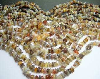 Botswana agate - bead - full strand - chip - disc - A quality - PSC102