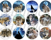 """Wolf Magnets, Wolf Pins, Wolf Cabochons, 1"""" Flat Backs, Hollow Backs, Cabochons"""