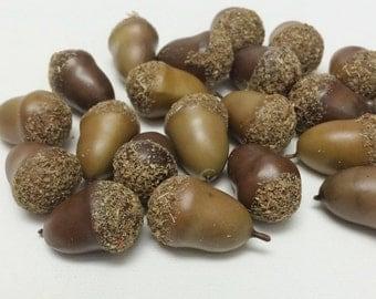 One Lot Artificial Acorns - Artificial Plants, Flower Crown