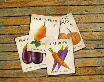 Harvest Postcard Set - Art Postcards - Fall Postcards - Garden Art - Garden Postcards - Print Set - Fall Produce Art - Fall Vegetable Art