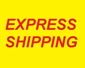 Express Shipping Turpex Turkish Post   Air  Mail  Service