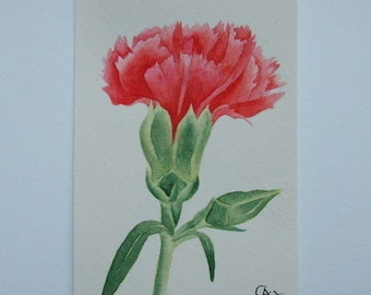 ACEO Original watercolor painting of a Carnation.