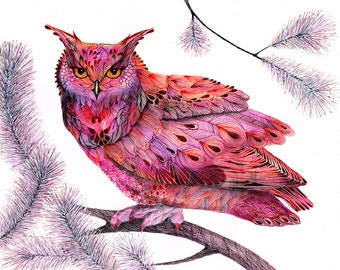 Pink owl birdl art print // SALE 1+1 // Buy one get one FREE, owl face, size 7x5 inch