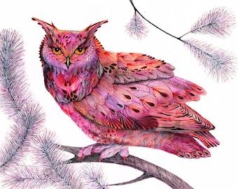 Pink owl bird, bird, art print, owl face, size A3