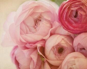 Flower Photo, Rose, pink, pastel, feminine, baby girl, nursery decor, print, ranunculus, bathroom decor, bedroom decor, floral print, photo