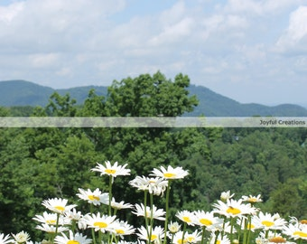 Photography Print... Smokey Mountain View