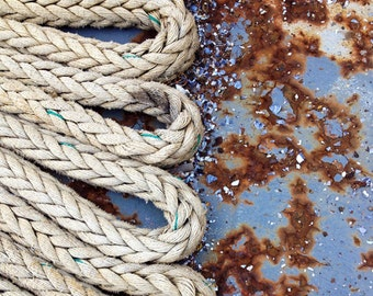 Rope, Industrial, Square, Decay, Rust, Shells, Blue, Cream, Tan, Texture, detail, 8x8, photograph
