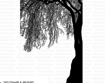 Weeping Tree - Digital Stamp and Brush - INSTANT DOWNLOAD - for Cards, Scrapbooking, Journaling, Collage, Invites, Crafts and More