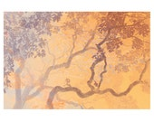 Coral Branches set of blank greeting cards