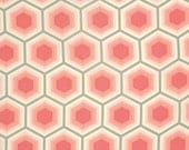Bumble Honeycomb in Sorbet by Tula Pink for FreeSpirit 1 yd Cotton Quilt Fabric