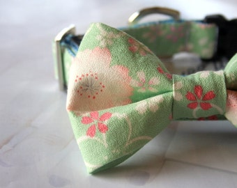 Light Green Cherry Blossom Bow Tie Dog Collar