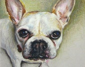 "Pet Portraits - Miniature Sketches in Color Pencil on Earth Tone Paper -  4"" x 6"" or 5""x 5"" - Unique Holiday Gifts"