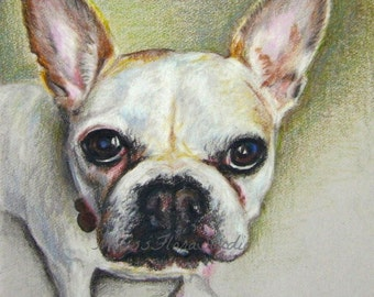 "Pet Portraits - Miniature Sketches in Color Pencil on Earth Tone Paper -  4"" x 6"" or 5""x 5"" - Unique Gift for Pet Lovers"