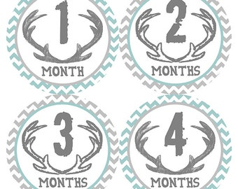 FREE GIFT, Monthly Baby Stickers Boy, Deer Antlers, Teal, Gray, Chevron, Baby Month Stickers, Milestone Stickers, Baby Belly Stickers, Deer