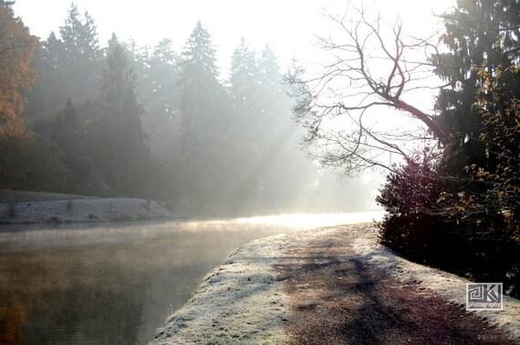 Misty morning, Winter landscape, Nature photography, Winter sunrise, Frozen lake, Path of life, Sunrays Sunbeams, Neutral wall art