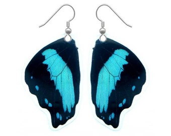 Real Butterfly Wing Earrings - Butterfly Jewelry, Nature Jewelry, Taxidermy, Butterfly Earrings