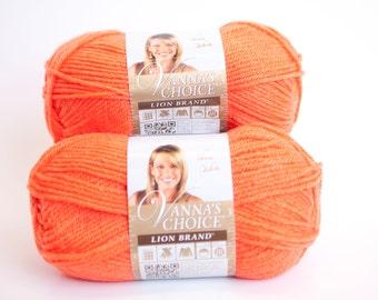 Lion Brand Vanna's Choice in Radiant Orange