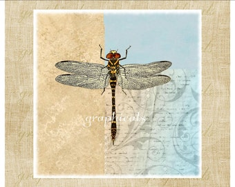 Dragonfly print aqua tan instant digital download graphic art image for iron on graphic Image for burlap print pillow tote bag No. 2218