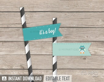 Owl Straw Flags - Owl Boy Baby Shower Party - Mint Teal - INSTANT DOWNLOAD - Printable PDF with Editable Text