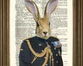 HARE SOLDIER GENERAL: Reprodukcja Armii Królika w Ceremonial Uniform Original Dictionary Page Antique Wall Hanging (8 x 10)