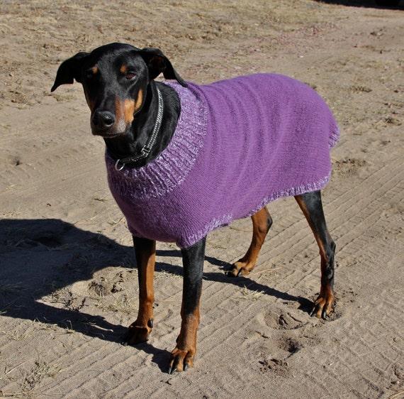 Xl Sweater Knitting Pattern : Knitting pattern for xl dog sweater felted