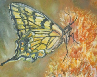 ACEO Limited edition Butterfly Print #a31  1/150