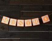 Unisex Monthly Baby Banner