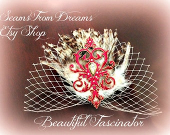 Beautiful Birdcage Fascinator headpiece