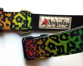 "1"" Wide Medium or Large Dog Collar - Leopard Print on Rainbow Background"