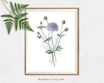 BLUE LACE FLOWER - digital image download - printable antique flower illustration retooled for image transfer - totes, pillows, prints