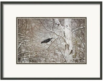 Crow, Crow Leaping, Jumping Crow, Crow in a Tree, Dark Art, Black Bird, Fine Art Photography, Unique Crow Art, Bird Print