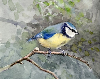 Blue Bird painting, original watercolor, chickadee family - Blue Tit chickadee, European bird aquarelle