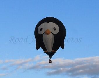 5 x7 matted photograph, hot air balloon penguin photograph
