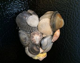 Heart shaped sea Shell /Coral  refrigerator magnet/Love decor