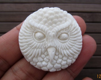 30mm x 30mm Excellent Detail hand Carved  owl cameo , Bone Carving, Jewelry making Supplies  B4888