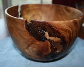 Hand turned decorative Elm bowl with bark inclusions.