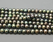 Super SALE Pine Green Freshwater Pearls, 5 to 6 mm Green Semi Round Pearls--full strand