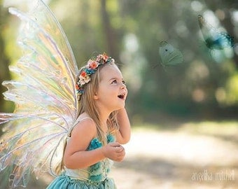 Iridescent Fairy wings