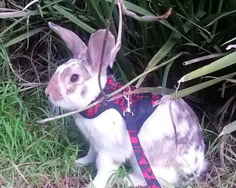 Made to order. Trendy harness for your rabbit , One for the boys , Red and black print . Matching  leash available