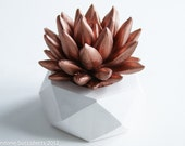Succulent Sculpture with Interchangeable Container, Tabletop, Desktop Accessory, Modern, Geometric, Hexagon, Home and Office Decor