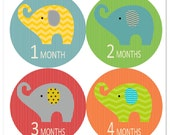 Elephant Party Baby Monthly Stickers