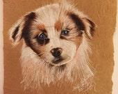 Custom Pet Portraits, Australian Shepherd Portrait, Aussie, Aussie Drawing Portrait Shepherd Drawing, Aussie, Aussie Drawing