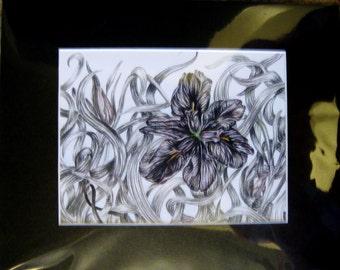 """8x10"""" Black Flower (Melanoma)"""